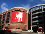Zynga to close its game development studio in the UK