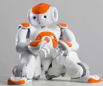 UK schools get humanoid robots to make tech education more appealing to children
