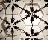 Mesmerising video created using kaleidoscopes & gymnasts