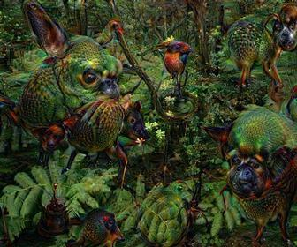 How to use Google's Deep Dream to create psychedelic, hallucination-like images