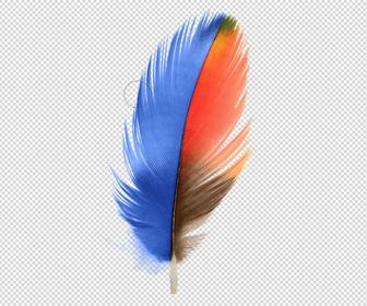 Pixelmator 3.5 Canyon brings new selection tools and a retouch extension for Photos