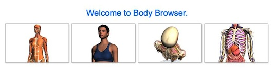 bodybrowser.googlelabs.com
