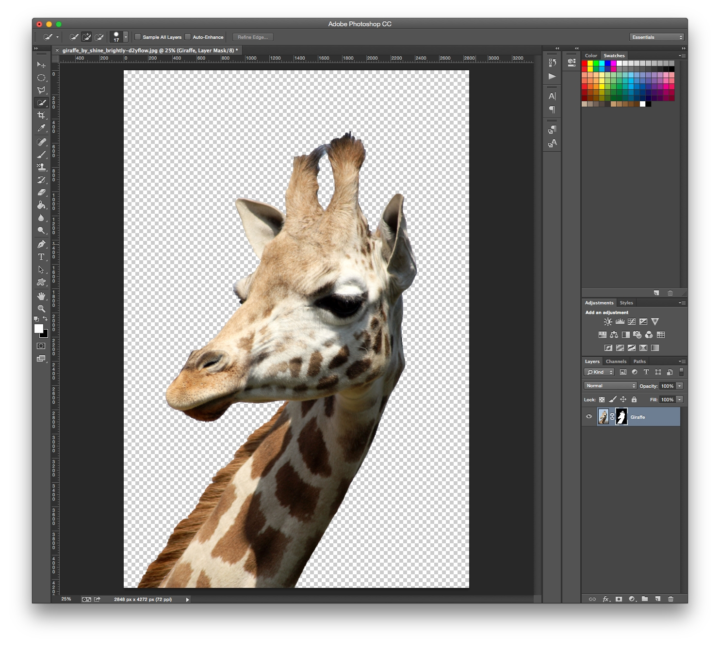 How to remove background Photoshop | Cut out an image ...
