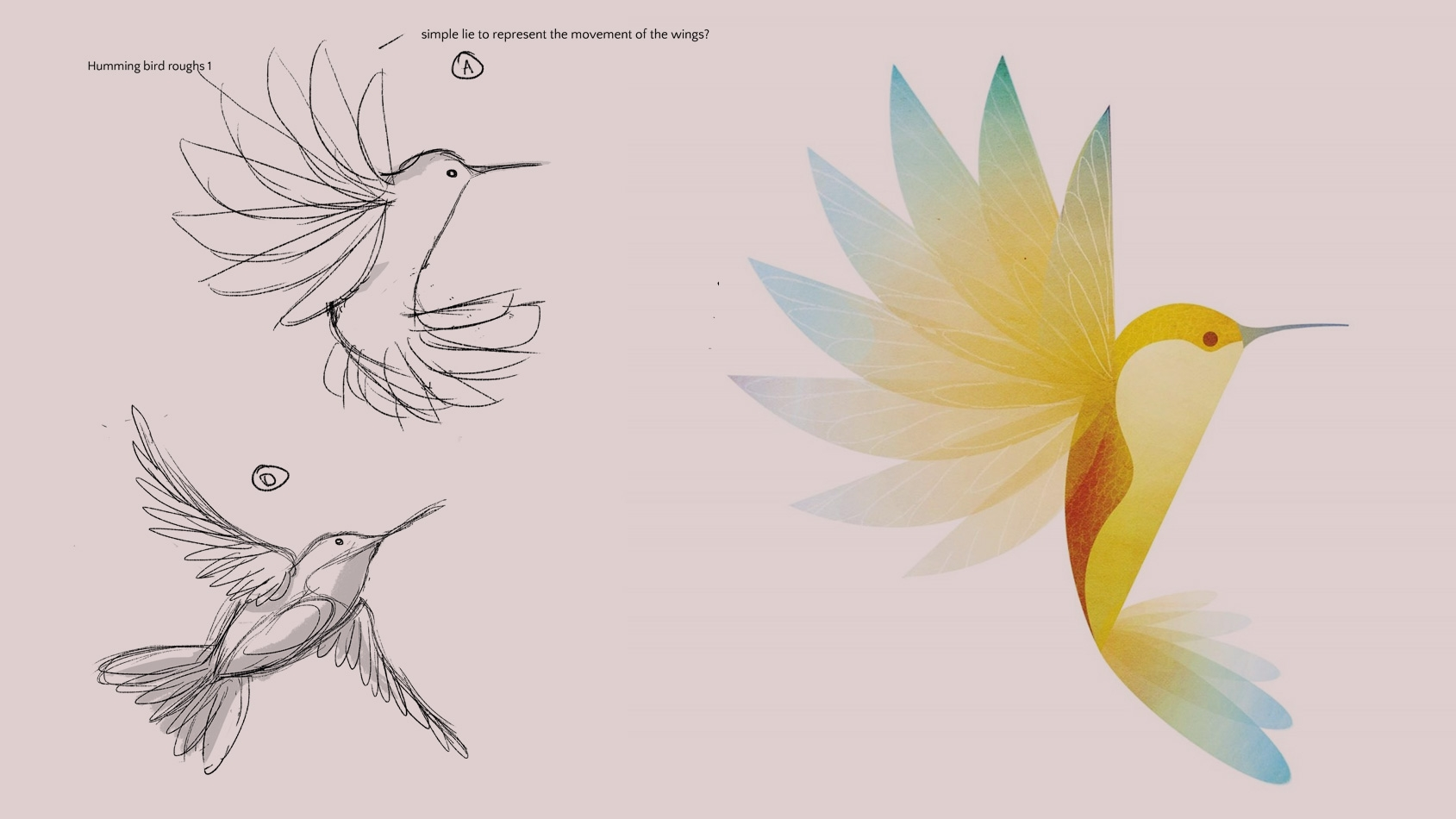 How To Draw Birds: 18 Tips For Both Hand-drawn And Vector