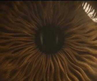 Spectre titles design: How Framestore combined explosions and octopi for James Bond's latest film