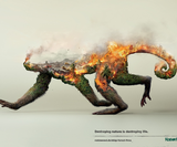 These environmental illustrations are sad but beautiful